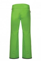 DARE 2b Men Snow Pant Certify II fairway green